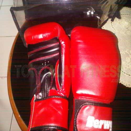 1 bocing glvs wtr - Boxing Gloves Berwyn