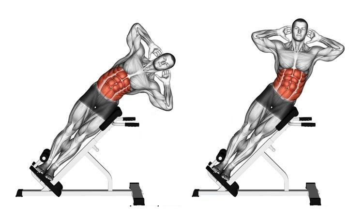 Adjustable Hyperextension 2 - Adjustable Hyperextension Body Gym Plus