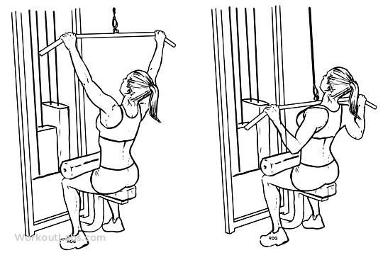 Lat Pull Down Machine exercise 1 - Lat Pull Down Machine Body Gym Plus