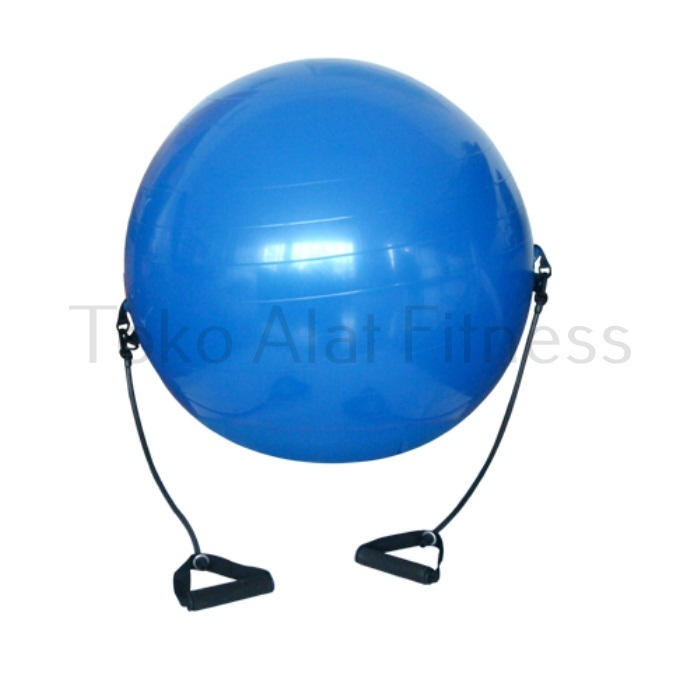 Gymball With Tubing c - Gymball 65cm With Tubing Siken