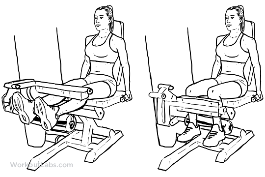 seated leg extension - Body Strong Leg Extension - BMW-014