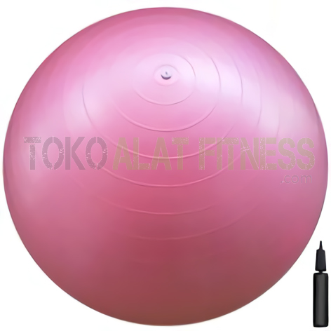 GYMBALL KAISSER PINK waifu2x art noise3 scale tta 1 wtr - Gymball 65cm Pink Keisser