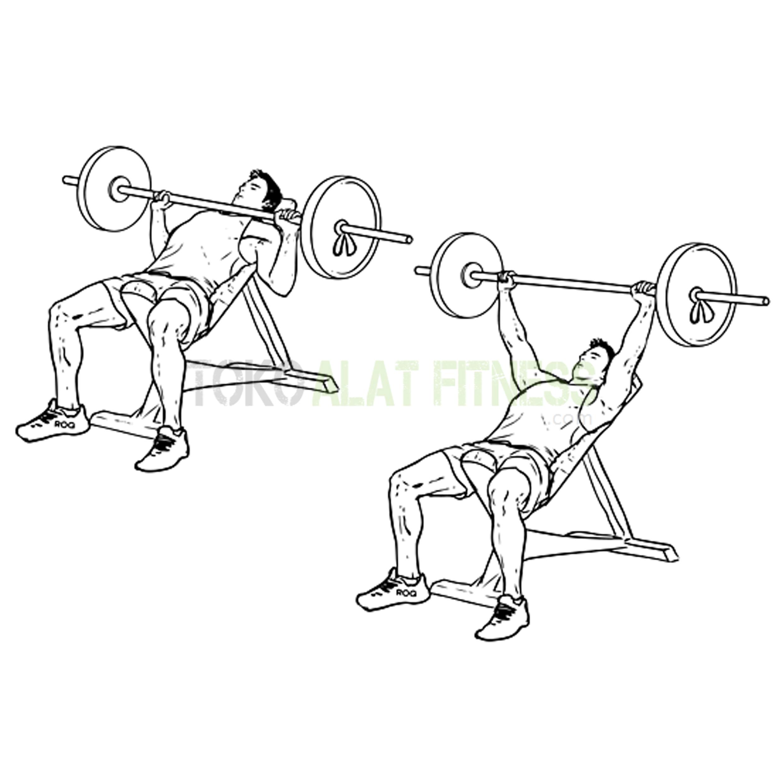 BG03 Incline BP 3 - Body Gym Incline Bench Press BG03 ( Lokal )