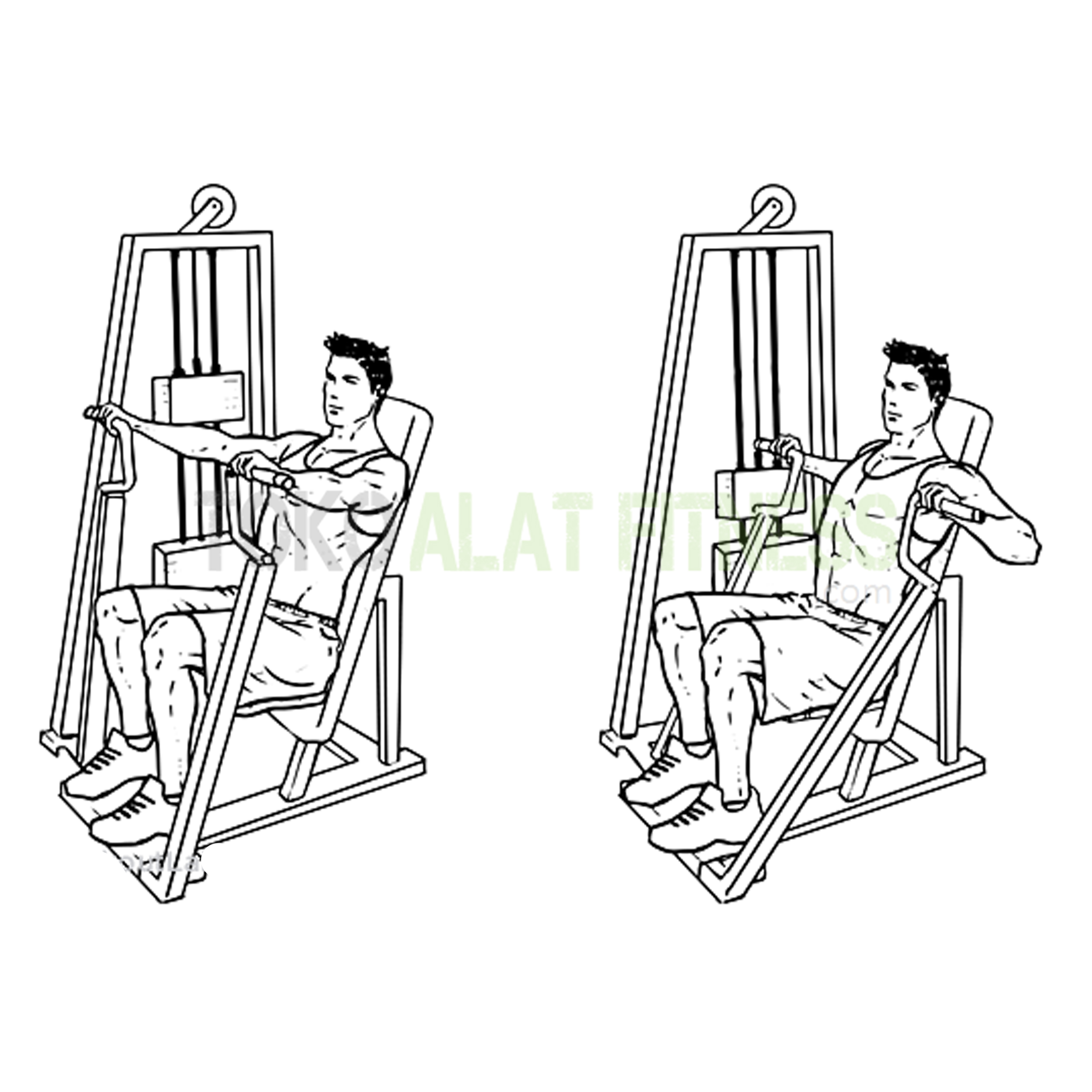 BG10 Chest Press 3 - Body Gym Chest Press ( Lokal ) - BG10