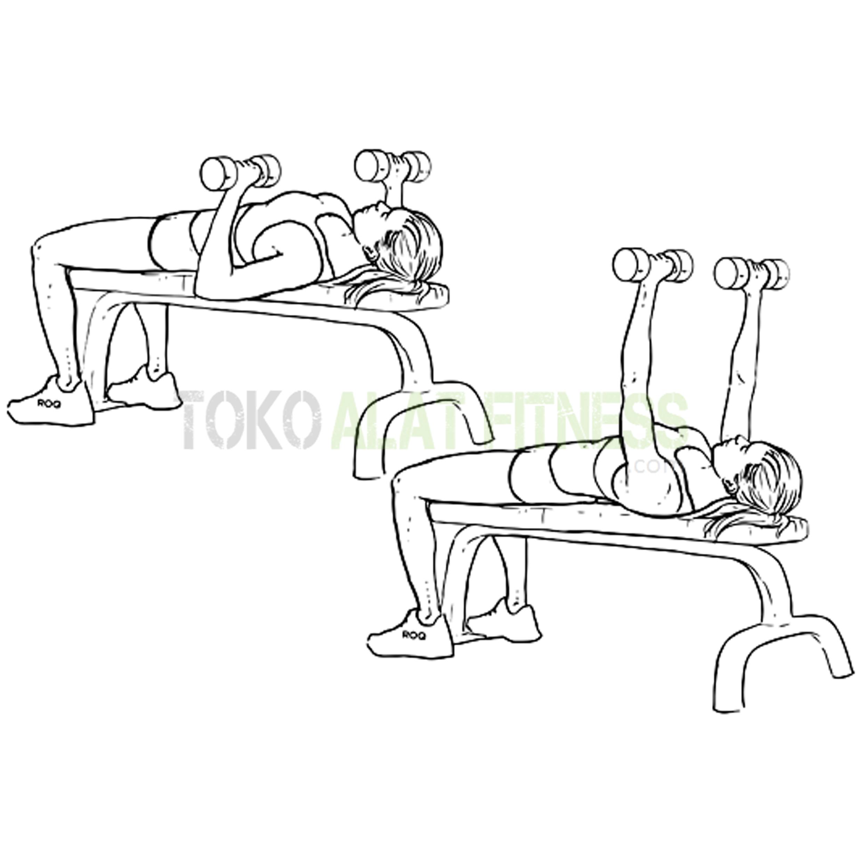 BG19 Dumble Bench 3 - Body Gym Dumble Bench - BG19