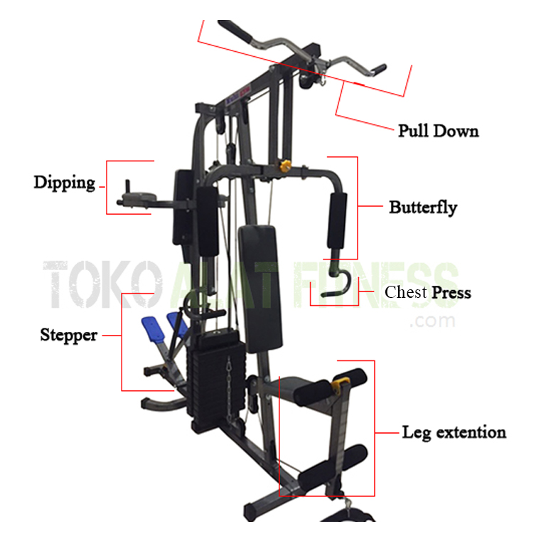 Home Gym 2 Sisi BGD1500 2 - Home Gym 2 Station Body Gym