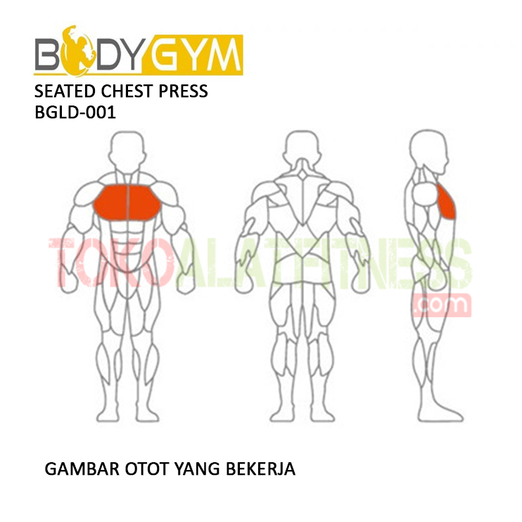 TOKO ALAT FITNESS SEATED CHEST PRESS BODY GYM BGLD 001 3 - Seated Chest Press BGLD-001 Body Gym