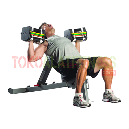 Dumbell Power Block 50 lbs workout 1 wtm - Adjustable Dumbell Set Block 50 Lbs Body Gym