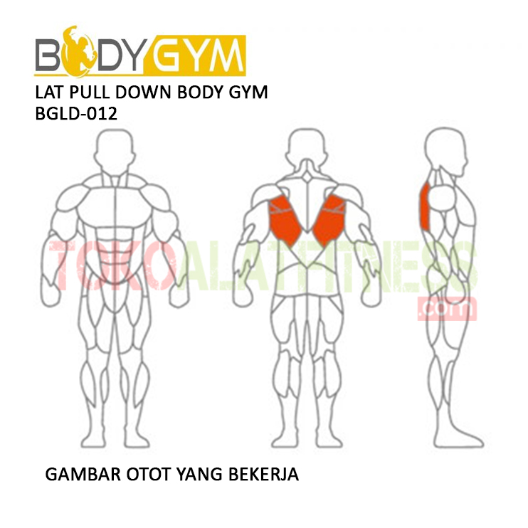 TOKO ALAT FITNESS LAT PULLDOWN BODY GYM BGLD 012 3 - Lat Pull Down Body Gym BGLD-012
