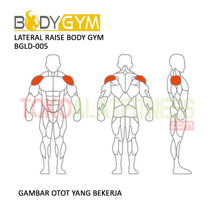 TOKO ALAT FITNESS LATERAL RAISE BODY GYM BGLD 005 3 - Lateral Raise Body Gym BGLD-005