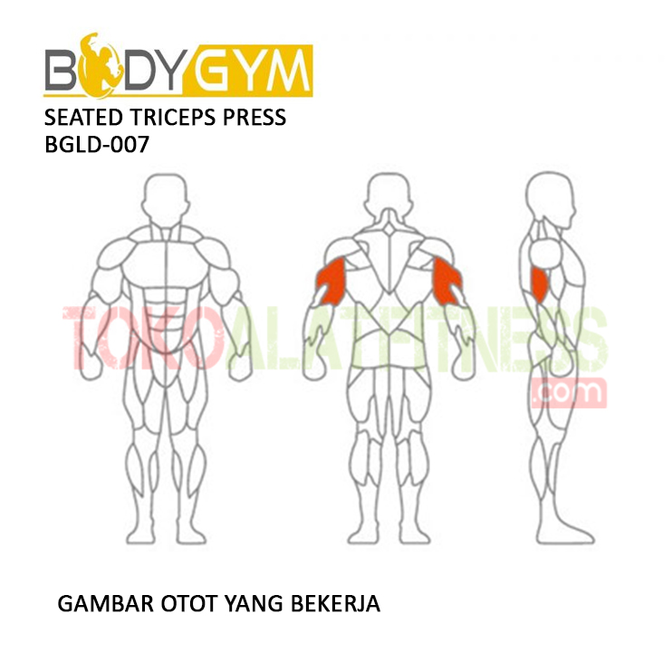TOKO ALAT FITNESS SEATED TRICEPS PRESS BODY GYM BGLD 007 3 - Seated Triceps Press Body Gym BGLD-007
